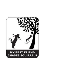 Little Gifts My Best Friend Chases Squirrels Car Magnet