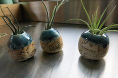 Extra Extra Small Handmade Ceramic Potted Air plant