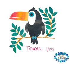 Toucan by Tracey English  www.tracey-English.co.uk