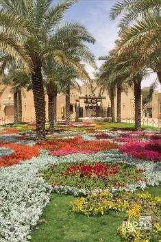 7 Wadi Ideas Wadi Saudi Arabia Nature