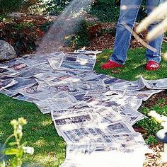 Newspaper covered in Mulch (so it doesn't look like newspaper) Prevents Weeds in the Garden