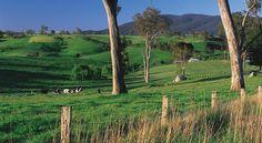 Bega - New South Wales