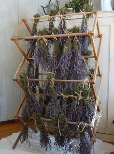Drying herbs on an old laundry drying rack. This is exactly how I dry my herbs, works well and adds a little magical feeling to your home✨ Herb Garden, Vegetable Garden, Home And Garden, Permaculture, Lavender Fields, Lavander, Lavender Flowers, French Lavender, Growing Herbs