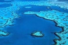 Petition · Environment Minister : Save the Great Barrier Reef · Change.org