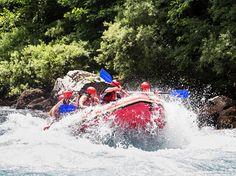Rafting Center Drina-Tara: Choose Your Adventure!