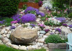 Rock Cress Terrace--a blog.