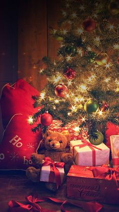 HD 1440x2560 lonely christmas gifts xiaomi mi5 wallpapers