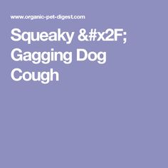 Old Dog Keeps Coughing