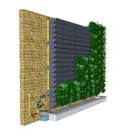 green wall system vertical garden hanging planter_Product #vertical #garden #wall #verticalgardenwall Vertical Green Wall, Vertical Garden Plants, Vertical Garden Design, Vertical Farming, Vertical Garden Systems, Vertical Planting, Vertical Gardens, Jardim Vertical Diy, Ficus Pumila