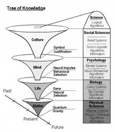 Tree of Knowledge System - Psychology Wiki artificial intelligence father Philosophy Theories, Philosophy Of Mind, Philosophy Of Science, Philosophy Quotes, Systems Thinking, Knowledge Management, Change Management, Matter Science, Critical Thinking Skills