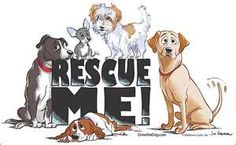 Help save the pups, foster or adopt!