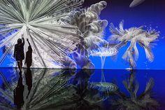miguel chevalier genera fiori frattali con la realtà virtuale in quest'opera immersiva.  http://virtualmentis.altervista.org/