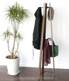 RUNOUT: Hanger that combines functionality and design. And interior furniture accessory rack hanger storage drying fashionable design scarf stylish tie - Purchase now to accumulate reedemable points! Hanger Rack, Coat Hanger, Walnut Wood, Store Design, Scandinavian Design, Wardrobe Rack, Natural Wood, Interior Decorating, Furniture