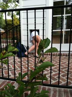 when your {anonymous} client has to crawl through her own doggie door while visiting the jobsite...   posted by rachel halvorsen designs  on her blog    http://nestegg.typepad.com/nest-egg/