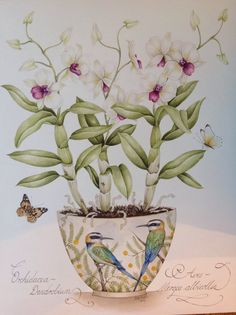 Bee-Eaters with Dendrobium Orchid and butterflies. Original watercolours painting by Kelly Higgs