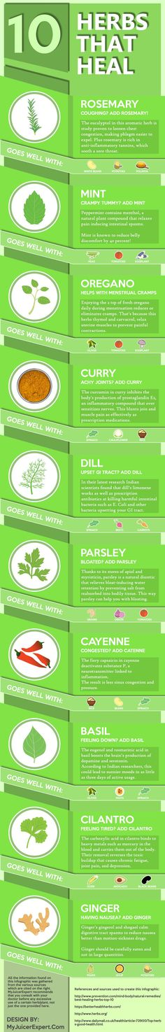 Top 10 Herbs That Heal #Infographic #Herbs #Health