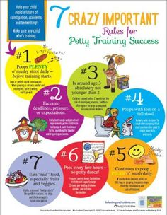 7 Crazy Important Rules for Potty Training Success