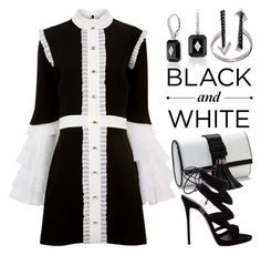 """ BLACK & WHITE  3875"" by boxthoughts ❤ liked on Polyvore featuring macgraw, Giuseppe Zanotti and Lord & Taylor"