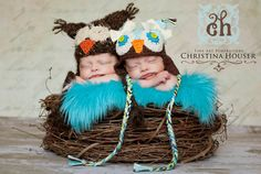 Twin newborn wood branch owl nest! $65.00