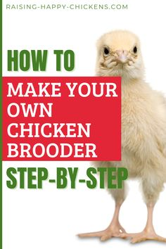Now that you have chickens, they need to go into a chicken brooder box. So how do you make your own chicken brooder? In this article, we'll look at making a DIY brooder box: what it should look like, what it should contain and how it should be modified as chicks grow. Continue reading by tapping through the pin. #raisinghappychickens Chicken Brooder Box, Fancy Chicken Coop, Backyard Coop, Backyard Chicken Coops, Fancy Chickens, Raising Backyard Chickens, Make Your Own, Make It Yourself, How To Make