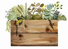 Watercolor painting- print- Crate and Plants Print, botanical, wood