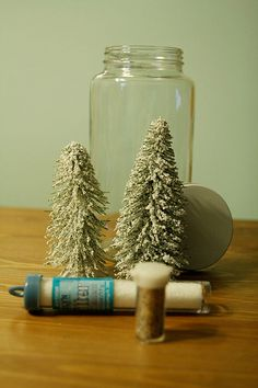 I want to make Snow Globes!