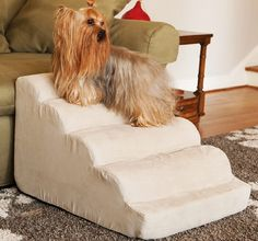 Knowing how to build dog stairs becomes an important skill when you have to help your pet up to your house or your bed. Dog stairs are necessary if your pet is still a young pup and cannot make the right strides to reach each step or if they are ...