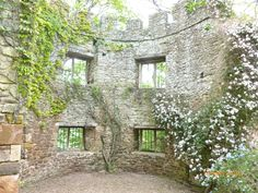 Dunster Castle, Somerset, England. Some of my ancestors were from Dunster - if you're researching the surname Thomas, do get in touch! esjones <at> btopenworld.com