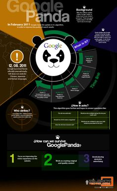 Infographic-What is The Google Panda Update- http://www.wildnettechnologies.com/blog/post/infographic-what-is-the-google-panda-update