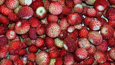 Strawberry, Food, Strawberry Fruit, Essen, Meals, Strawberries, Yemek, Eten, Strawberry Plant