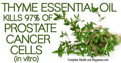 Share Tweet + 1 Mail Thyme Essential Oil Kills 97% of Prostate Cancer Cells in Vitro: The essential oil of the common herb thyme ...