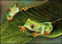 Tree Frogs 85x11 Watercolor Print by EthelLong on Etsy
