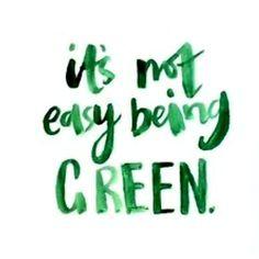 Slytherin Pride, Slytherin Aesthetic, Go Green, Green Colors, Colours, Green Bean, Green Girl, Green Theme, Green Grass