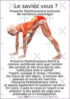« Planches Musculo-squelettique des positions de Yoga - N°10 » par rodolphe Augusto | Redbubble