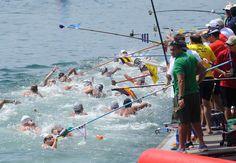 Open Water Swimming Open Water Swimming, Public, Sport, Deporte, Sports