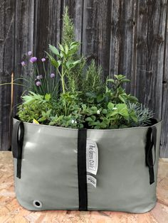 The Big Urban planter ideal as a raised vegetable bed or flower bed and very popular for the herb garden. Big Garden, Herb Garden, Urban Planters, Vegetable Bed, Green Bag, Flower Beds, Bloom, Herbs, Popular