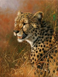 HD oil painting Prints on canvas,sweetveld,The hungry cheetahs,African leopard