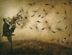 astounding images from The Architect's Brother, by Robert & Shana Parkeharrison