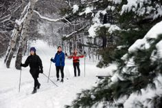 Winter day trips from NYC: Ten family-friendly destinations