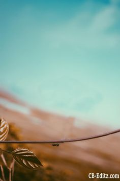 CB Backgrounds HD,CB Backgrounds Manipulation CB background hd, CB background new CB background full hd, CB edit background hd downlod,Aman Kumar Blur Image Background, Blur Background Photography, Studio Background Images, Background Images For Editing, Light Background Images, Picsart Background, Editing Photos, Instagram Background, Natural Background