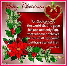 For God so loved the world that he gave his one and only Son, that whoever believes in him shell not perish but have eternal life religious christmas jesus quotes Christmas Scripture, Christmas Prayer, Merry Christmas Quotes, True Meaning Of Christmas, Merry Christmas Greetings, Christmas Jesus, Christmas Blessings, Christmas Messages, Christian Christmas