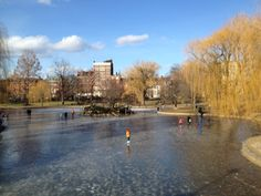 Frozen lagoon in Boston Public Garden on New Year's Day 2014. © Michael Rass