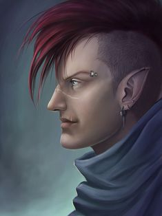 shadowrun; male; elf; punk; mohawk; red-haired