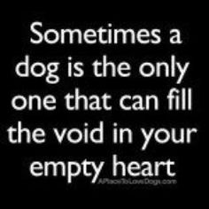 "For sure !   Oh, YES !    Only it isn't  ""sometimes"" it is ALWAYS.  .. Everyone. Should own a dog once in their life . Perhaps twice....?"