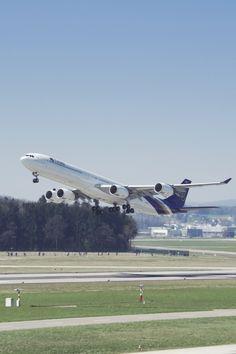 Tags: airplane, Airbus, A340, Thai, takeoff, aviation, travel,