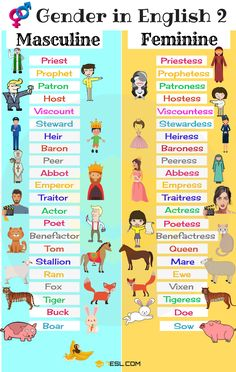 List of Genders of Nouns! Learn the Gender of Nouns and useful list of Masculine and Feminine words in English with picture and video. Teaching English Grammar, English Vocabulary Words, Learn English Words, English Language Learning, English Writing, English Tips, English Class, English Lessons, Masculine And Feminine List