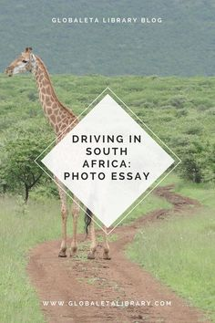 microeconomics and tourism in south africa tourism essay Economic impact on south africa post soccer world cup: research  macro & microeconomics type: essay level  background preview of the south africa's tourism.