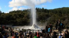 Take a closer look around Rotorua with this collection of unique local photographs. Use our image galleries to inspire and help you plan your next Rotorua trip. Us Images, Niagara Falls, New Zealand, Explore, Lady, Nature, Bucket, Travel, Beauty