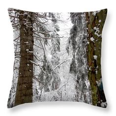 Winter Throw Pillow featuring the photograph Winter Photo In The Forest by Cuiava Laurentiu Pillow Reviews, Winter Photos, Pillow Sale, Basic Colors, How To Be Outgoing, Color Show, Pillow Inserts, Colorful Backgrounds, Fine Art America