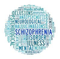A group of researchers from Spain and the U.S. have found that schizophrenia is actually a group of eight genetically different types of diseases, each of which presents its own set of symptoms. Scientists from the universities of Granada (Spain) and...